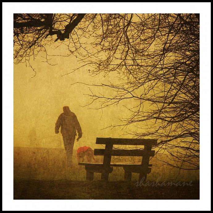"Fading Away - Foggy winter, golden scene  8 x 8"" man and dog, fine art"