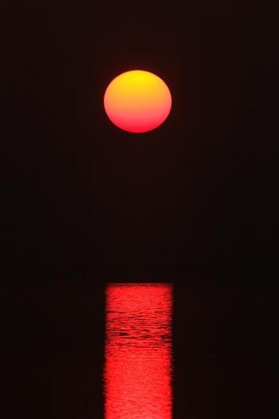 The Sun Rises Through the Fog on Florida's Gulf Coast