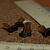 Boot Beads 9-1047