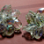 Crystal Dazzle 1950 Mid-Century Vintage Beaded and Wired Clip-On Earrings