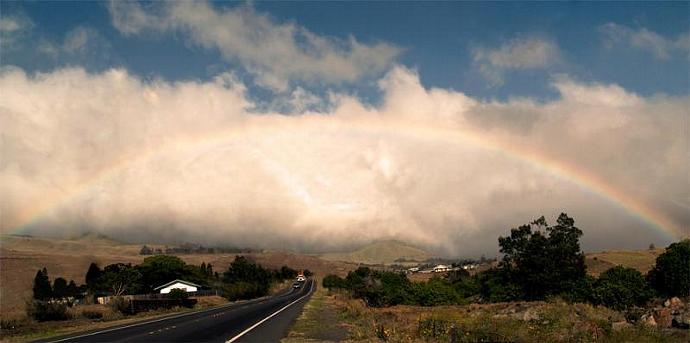 On the Road to Hilo-fine art print
