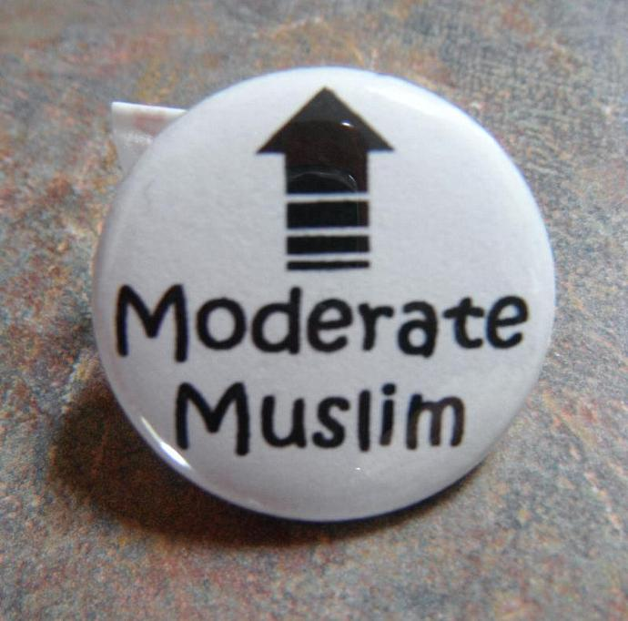 Moderate Muslim Button Pin
