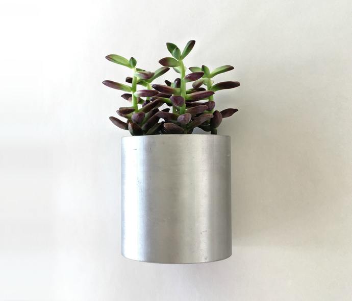 Wall Succulent Planter from Recycled Metal Pipe