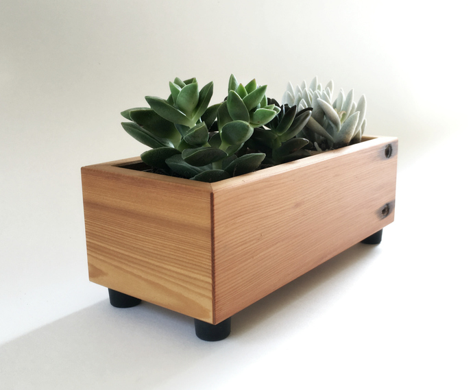 Wood Succulent Planter