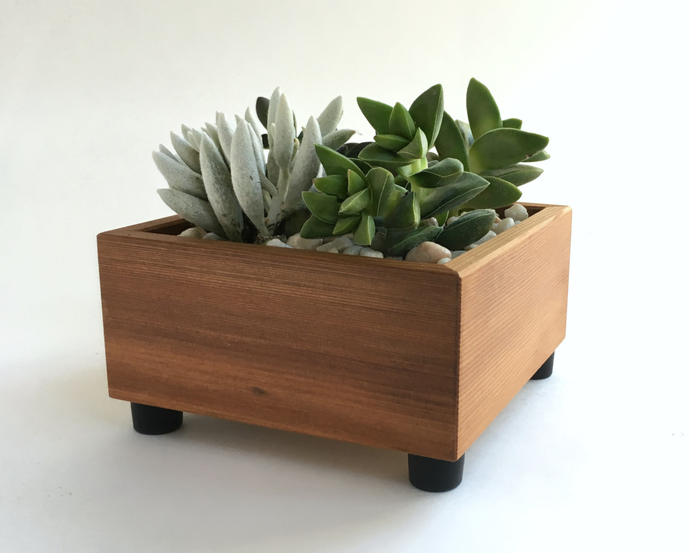 Modern Square Recycled Wood Succulent Planter Box - Reclaimed Wood - Modern