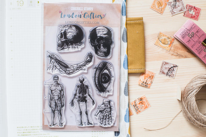 Vintage anatomy II clear stamp set - decorative planner stamps suitable for any