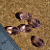 Pink Chinese Crystal Teardrop Beads 10-1326
