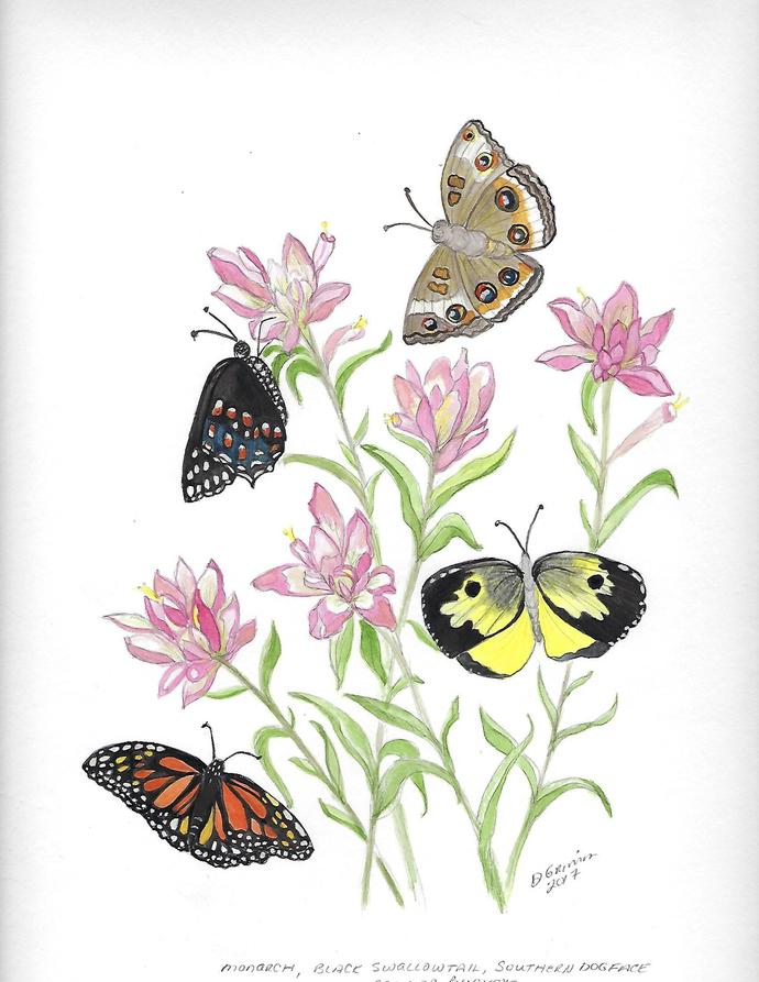 Four Butterflies in Flowers