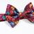 Little Guy Bow Tie - Autumn Floral on Sangria