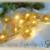 Christmas Lights - Holly / 4x4 hoop