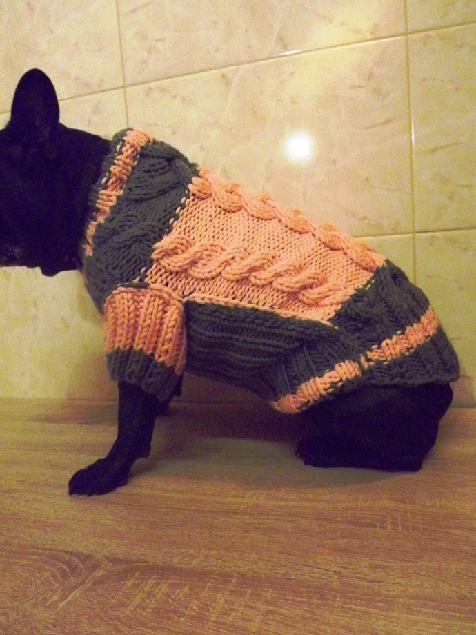 Sweater coat for dogs.