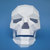 Halloween,Halloween decoration,happy halloween,Day of the Dead,3d Skull,Party