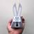 Babyshower,DIY favor, Papercraft,Easter bunny,Easter rabbit,Printables,happy