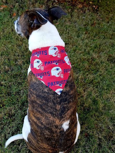 New England Patriots Dog Bandana, New England Patriots Football, Sports Bandana,