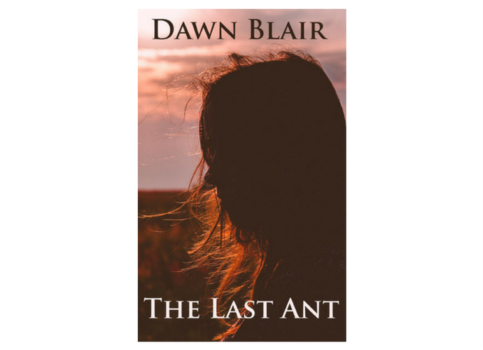 The Last Ant (a short story by Dawn Blair)