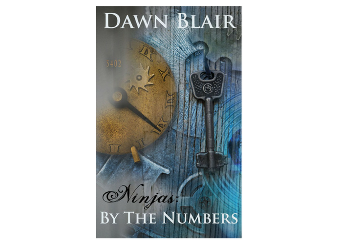 Ninjas: By the Numbers (a novellete by Dawn Blair)