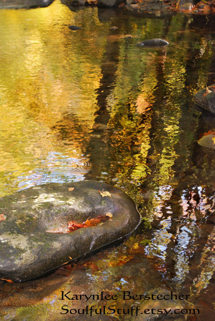 Reflections of the Spirit--Mountain Woodland Stream Fine Art Matted Photography