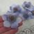 5pcs Silk Adorable Flowers  -