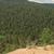 Forest Sea Salt Bath Salts, Foot Soak, Spruce, Vetiver or Patchouli, Sandalwood,