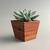 Dark Wood Succulent Planter, Geometric Mid Century Modern Style