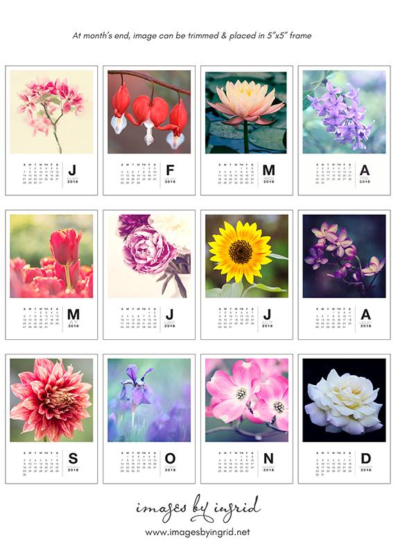 2018 Floral Calendar Nature Flower Fine Art Photography