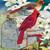 Red Bird Express Cross Stitch Pattern***LOOK***X***(INSTANT DOWNLOAD)***