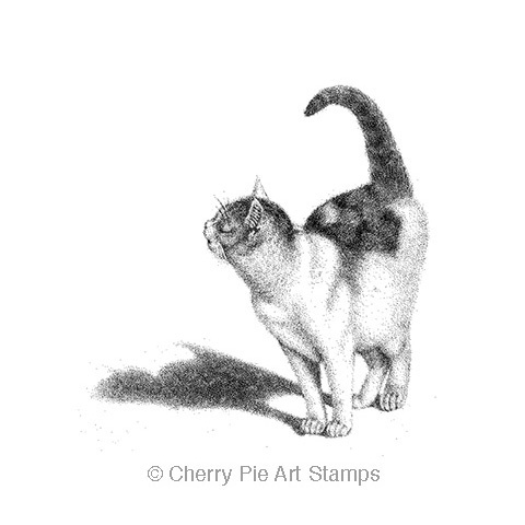Realistic CAT with shadow- CLiNG RuBBer STAMP by Cherry Pie Q444