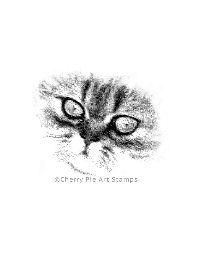 Persian CAT face- CLiNG Rubber STAMP by Cherry Pie P437
