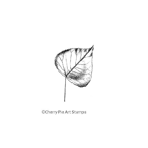 POPLAR leaf- CLING RuBBer STAMP  by Cherry Pie D154