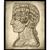 Vintage Symbolic Brain