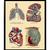 Vintage Internal Organs Anatomy