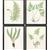 Vintage Botanical Fern Print