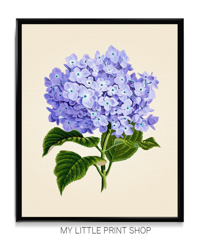 Vintage Purple Botanical Flower