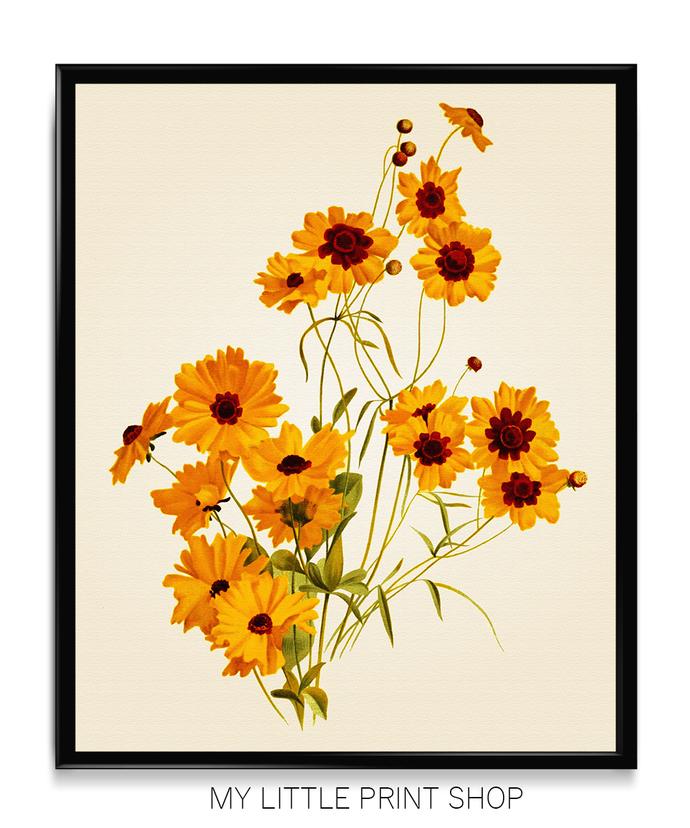 Vintage Orange Flower Botanical Print