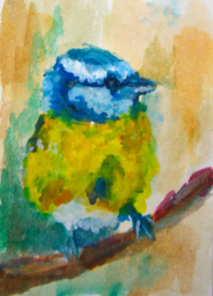 Original ACEO- Yellow Blue Finch Bird