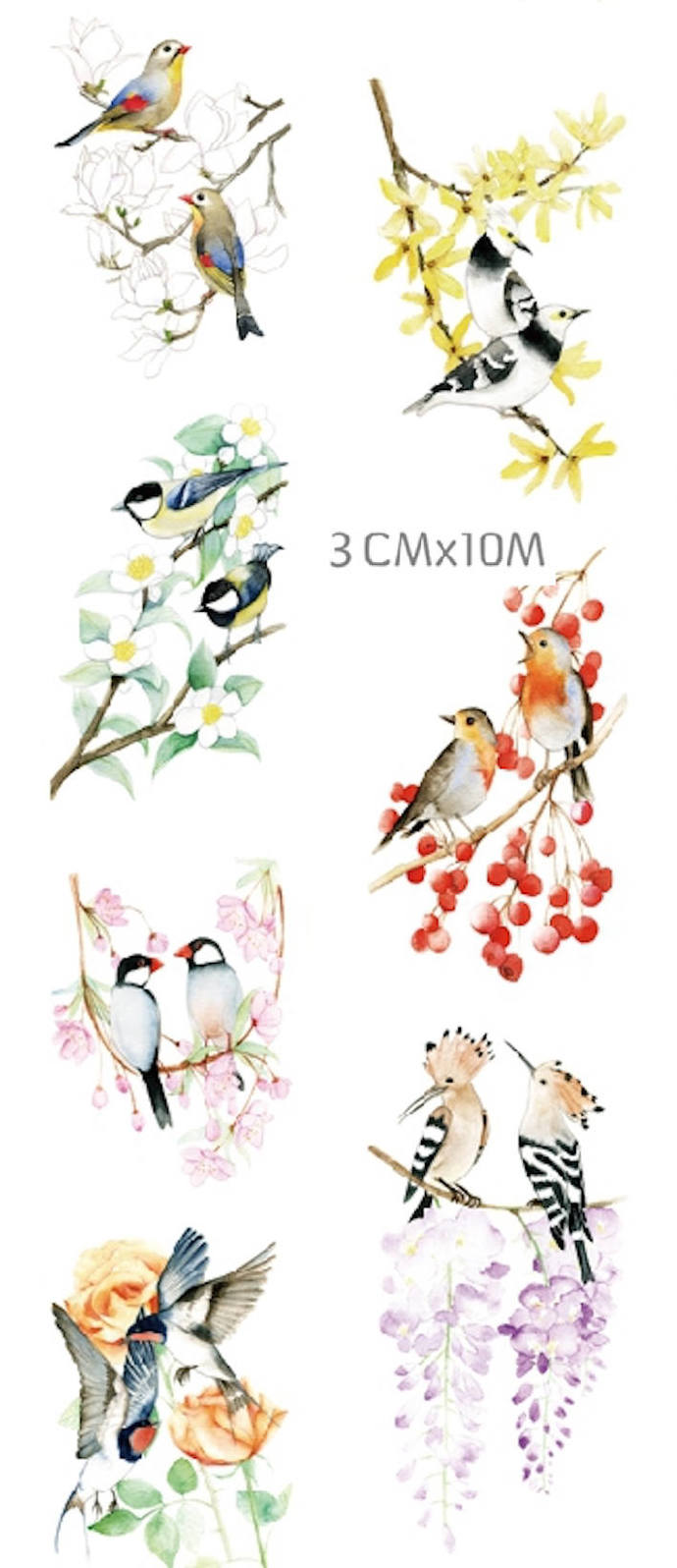 1 Roll of Limited Edition Washi Tape:  Lovely Birds Couples
