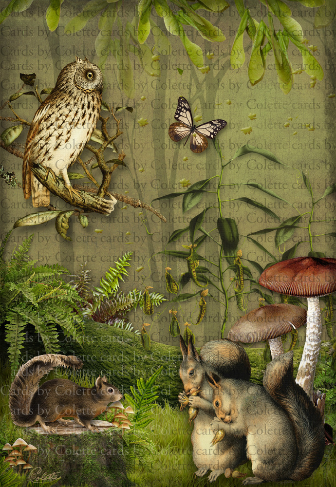 Beautiful Owl and Squirrels Digital Collage Greeting Card973