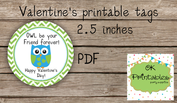 Valentine's Day Tag / Stickers / Cute Owl Valentine tags/ Classroom Valentine
