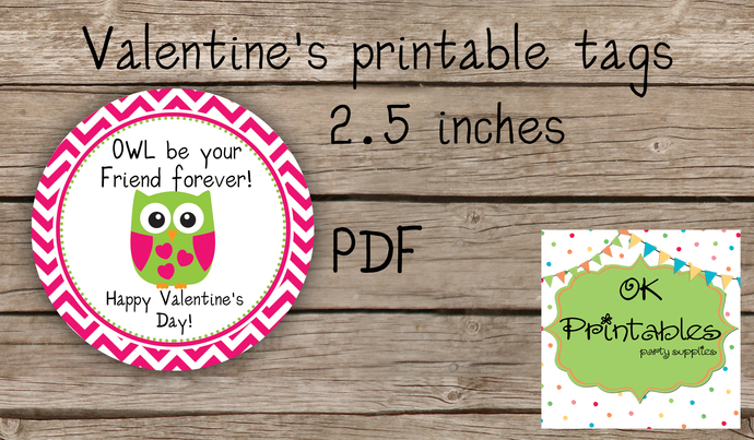Valentine's Day Tag / Stickers / Cute Owl Valentine tags 2/ Classroom Valentine