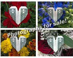 Item collection 91550238 361b 4490 a306 8e6e515261e1