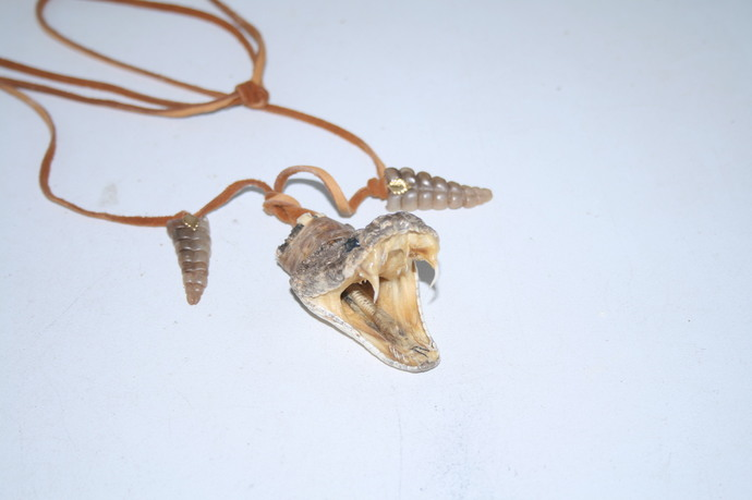 Rattlesnake head with rattles necklace,  v481 .. , ....Mountain Man