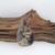 Indonesian Moss Agate Cabochon - CMA52