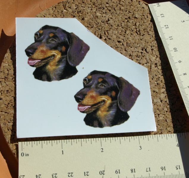 Dachshund Ceramic Waterslide Decals