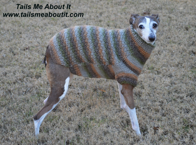 READY TO SHIP - Green and Orange Striped Hand Knit Dog Sweater - Small Dog
