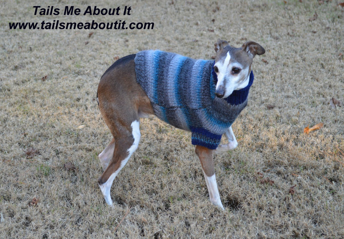 READY TO SHIP - Blue Striped Hand Knit Dog Sweater - Small Dog