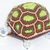 Leo The Box Turtle