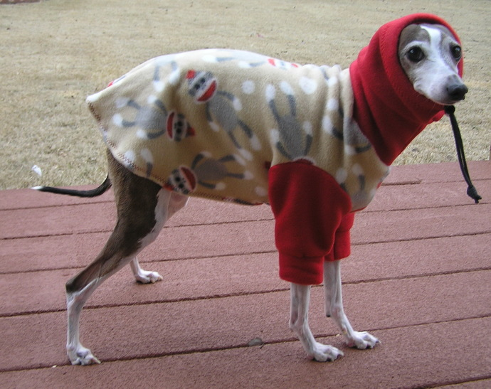 Sock Monkey Dog Sweatshirt - Snoodie Sweatshirt