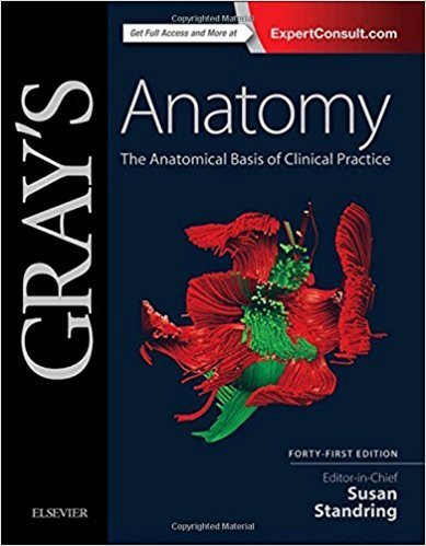 Gray's Anatomy: The Anatomical Basis of Clinical Practice 41st Edition ISBN-13: