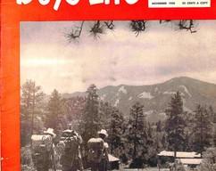 Item collection boys life magazine november 1950 2015 09 30 19 36 20