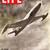 Life Magazine, August 13 1945